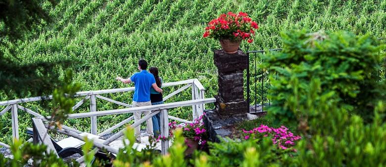 Wine Tour nr. 2 – Etna e Catania