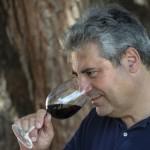 Massimo Maggio, presidente del Consorzio volontario di Tutela Docg Cerasuolo di Vittoria