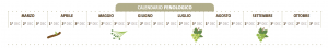 calendario enologico carricante