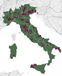 Localizzazione delle 215 aziende vitivinicole italiane (fonte: elaborazione Area Studi Mediobanca su cartografia Bing)