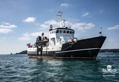 Sea Eagle boat in water